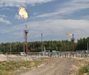 High Temperature Bearings for Oil Field Flares