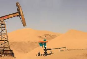 Netzsch Pumps Conveys Extremely Difficult Media to Oil and Gas Fields