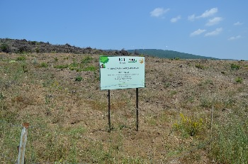 IFAT Eurasia 4,000 Trees for Climate Protection
