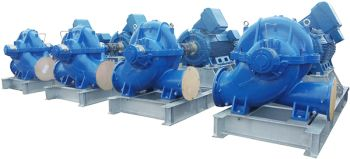 Dynapumps Supplied Process Water Pumps for Lithium Resources Project