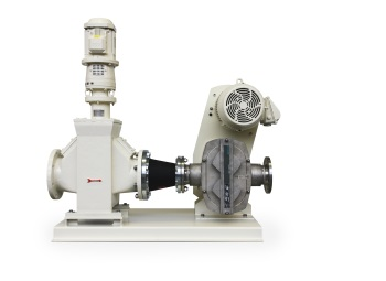 Combination of Macerator and Rotary Lobe Pump from Netzsch Enables Efficient Collagen Production
