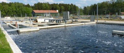 Fish Farm Achieves Optimal Water Conditions with Flygt Pumps