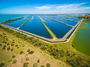 Partnership will deliver water innovation for Australia and New Zealand
