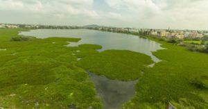 Cognizant y Grundfos se unen para restaurar el lago Sembakkam