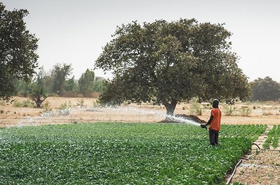 Wilo : Ensemble pour plus de protection climatique