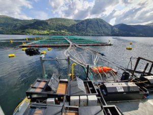 Framo Strengthens Sustainable Aquaculture Focus